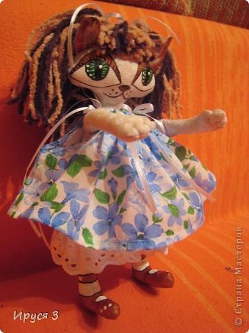 Кошечка Анютка фото 5