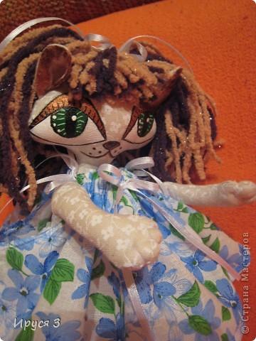 Кошечка Анютка фото 7
