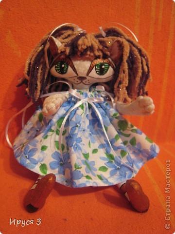 Кошечка Анютка фото 9
