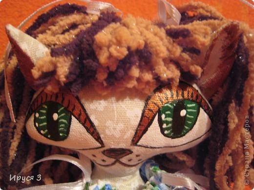 Кошечка Анютка фото 11
