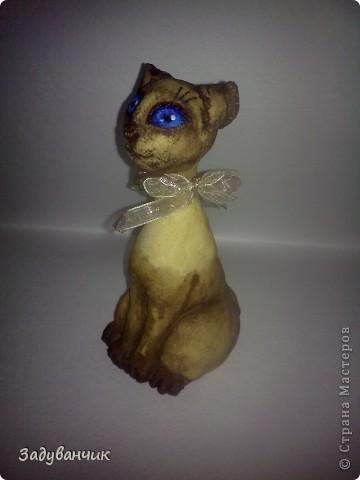 Сделала коллеге, любительнице сиамцев, на ДР кошку из соленого теста, результатом не довольна. Задумывалась киса совсем другой, но - уже что есть)) фото 2
