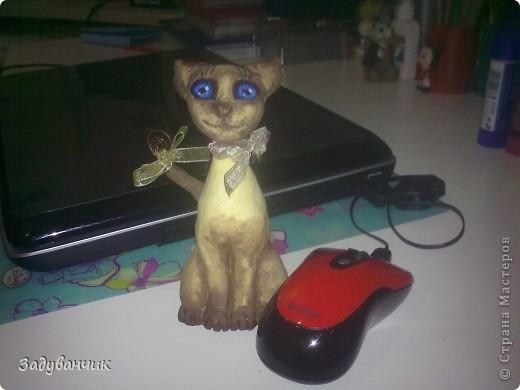 Сделала коллеге, любительнице сиамцев, на ДР кошку из соленого теста, результатом не довольна. Задумывалась киса совсем другой, но - уже что есть)) фото 1