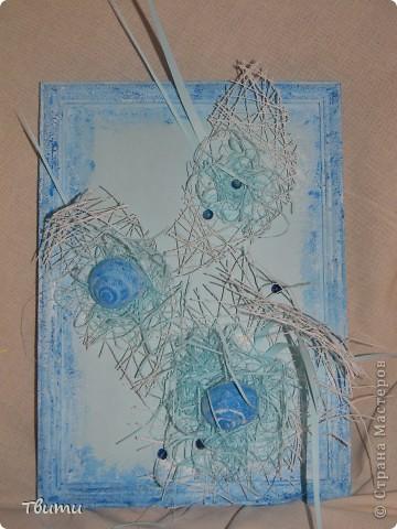 Картинка с ракушками фото 1