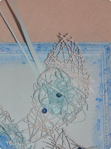 Картинка с ракушками фото 3