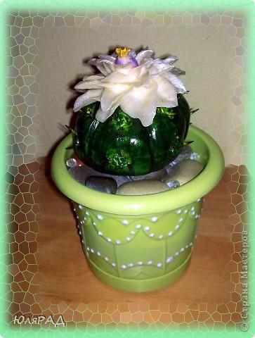Мой второй кактус из теста))) Только на этот раз цветочек из холодного фарфора. Лепила с фотографии, а как называется этот сорт кактуса не знаю))) фото 3