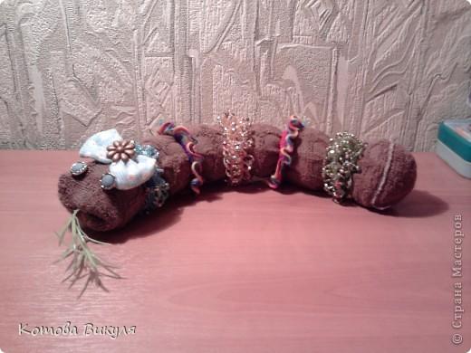 Змейка Зойка фото 1