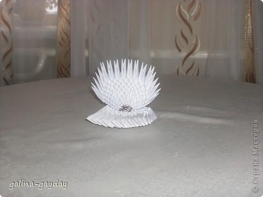 Жемчужинка фото 1