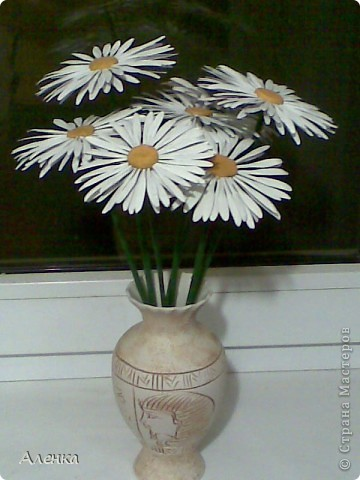 Мои цветы фото 2