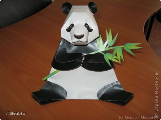 Панда2 фото 1