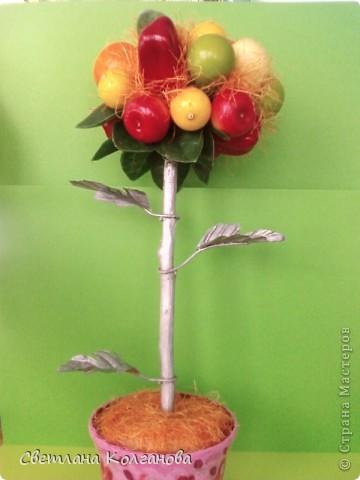 Фрукты на дереве  - покупала в магазине. Листочки от искусственных цветов прикрутила к веточке проволокой и покрыла серебряным аэрозолем. Горшок покрыла гуашью и лаком.  фото 1