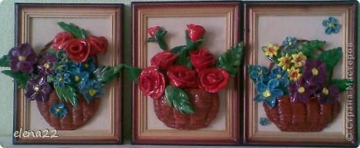 мои любимые розы фото 3