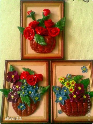 мои любимые розы фото 4