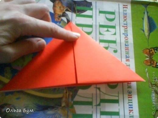 """Это сердце умеет биться! Оно двигается и стучит! Эта забавная динамическая модель оригами настоящая игрушка - мы все подносили друг другу к уху и слушали! Сзади у неё треугольный хвостик, который если сжимать, серединка выгибается вперёд, а """"крылышки"""" назад, при этом слышно """"стук"""". А если около уха держишь, то ещё больше похоже. Мы были в восторге.  фото 6"""