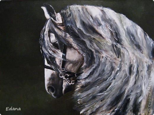 коняжка