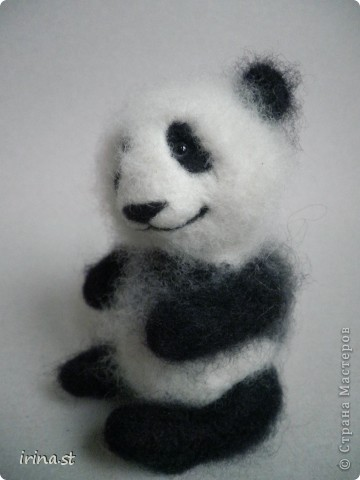Панда фото 6