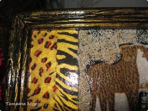 моя ПЕРВАЯ Африка фото 3