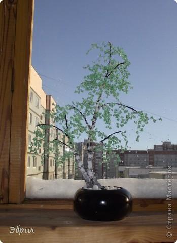 Поделка изделие Бисероплетение Цветы деревья и одно насекомое из бисера - Бисер Бутылки стеклянные Проволока фото 3.