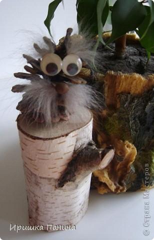 добрячок-лесовичок. фото 2