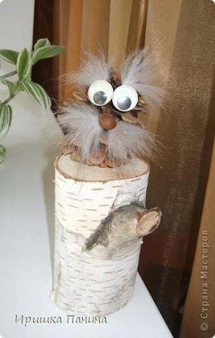 добрячок-лесовичок. фото 1