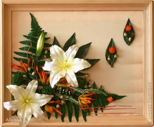 Хризантема фото 2