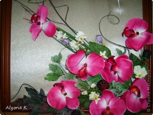 Хризантема фото 6