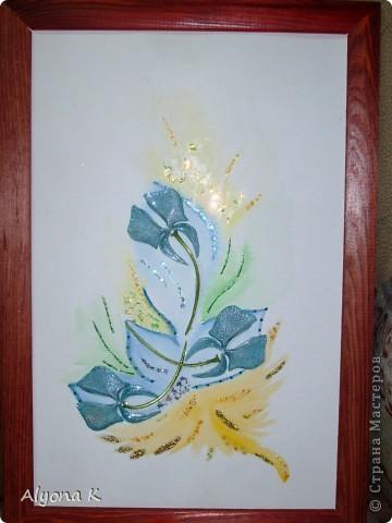 Хризантема фото 7