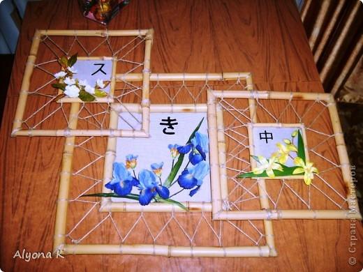 Хризантема фото 9