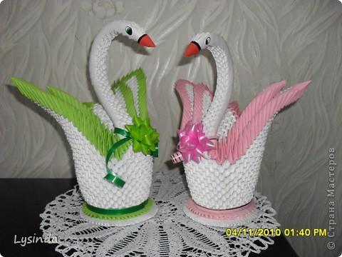 Лебедь фото 3