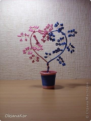 Сердечное деревце