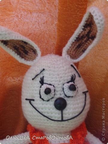 Моя первая вязаная игрушка. Идея не моя -нашла на сайте амигуруми. Но  делала по своему.Вот что из этого вышло. фото 4