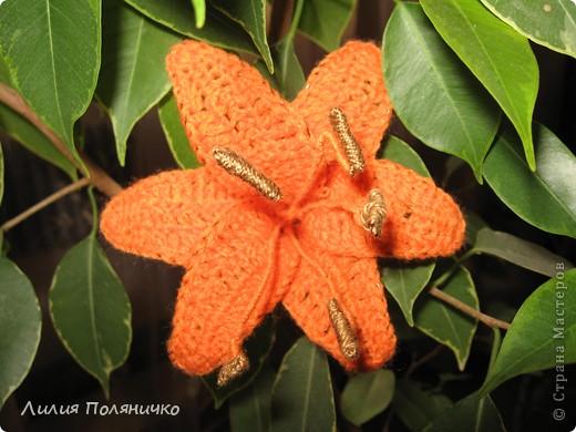 Вот такие лилии связались для моей мамочки фото 2