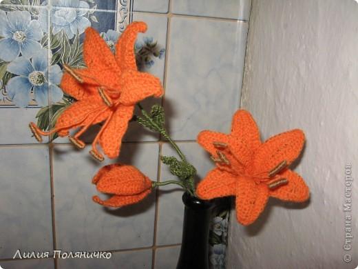 Вот такие лилии связались для моей мамочки фото 1