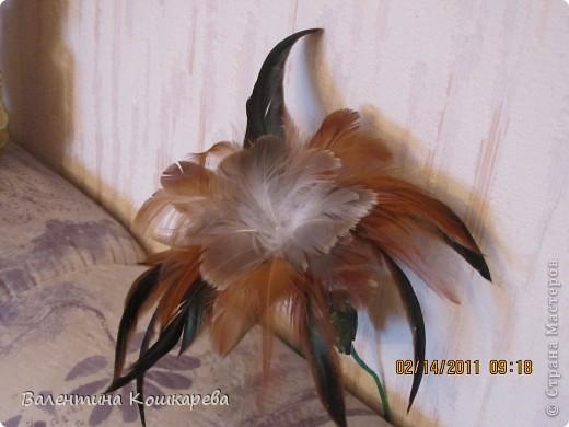 Бутылка с цветами из перьев фото 6