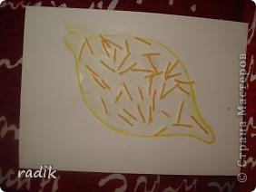 Это груша. фото 3