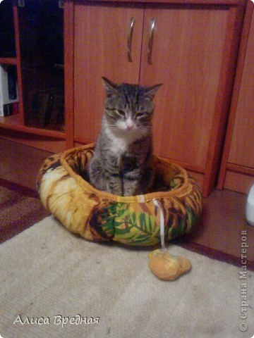 Решила сшить лежаночку для своих кошулек)))) по этому мк http://stranamasterov.ru/node/109289?c=favorite пока шел процесс шитья мне помогала младшая кошка Флешка, пока наблюдала там и уснула)))) фото 4