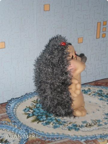 Ёжик! фото 2