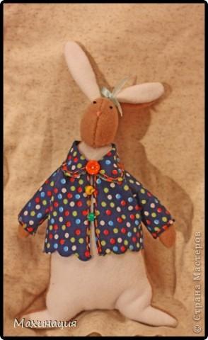 Зайчата Тильды  Материал: Флис, синтепон,на курточки пошла ткань, лежащая в шкафу) фото 1