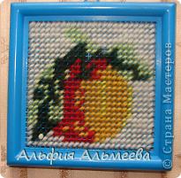 Эти вышивки доступны маленьким детям, т.к. вышиваются  пластмассовой  иголкой на пластмассовой канве.  фото 2