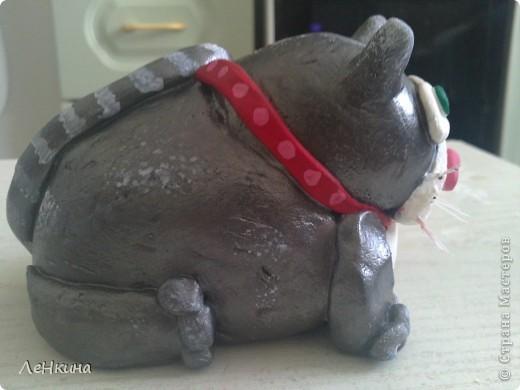 Котяра, толстый и недовольный!!!!! фото 3