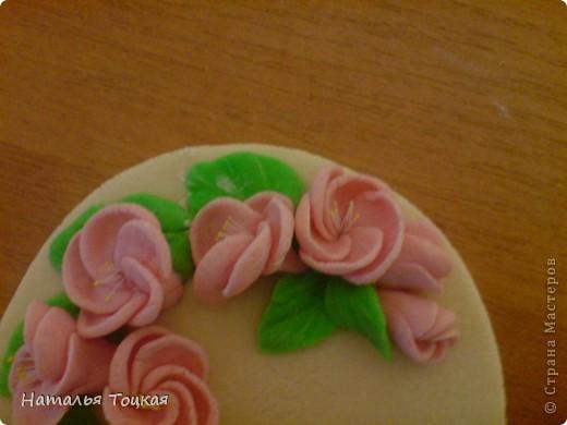Цвет вишни фото 2