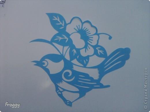 Птички фото 6