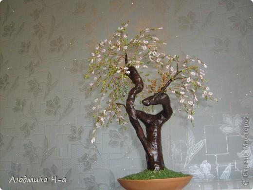 Бисерные деревья....... фото 7