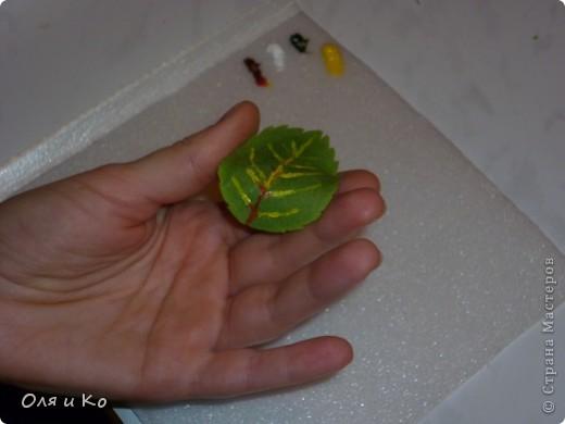 Слепилась у меня такая розочка из соленого теста. Она еще сохнет, поэтому лаком пока не покрыта. А пока она сохнет, я покажу, как делать листики. фото 28