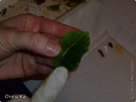 Слепилась у меня такая розочка из соленого теста. Она еще сохнет, поэтому лаком пока не покрыта. А пока она сохнет, я покажу, как делать листики. фото 34
