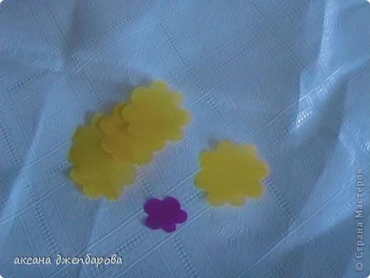 Цветущие шары. фото 9