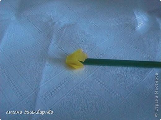 Цветущие шары. фото 10