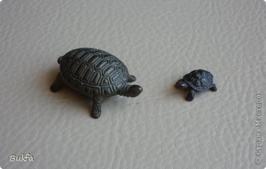 Продолжаю показывать своих черепашек. Начало можно посмотреть здесь http://stranamasterov.ru/node/151515. Фигурки куплены нами или подарены друзьями и родными, поэтому попадаются вроде бы одинаковые, но разного оформления. Рассказы о черепахах, как о живых или мифических существах или о символах предлагаю почитать у Олиандры.   Решила начать с микрораздела.  Это броши.  фото 10
