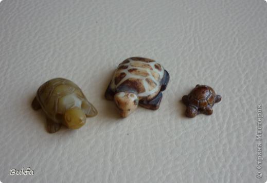 Продолжаю показывать своих черепашек. Начало можно посмотреть здесь http://stranamasterov.ru/node/151515. Фигурки куплены нами или подарены друзьями и родными, поэтому попадаются вроде бы одинаковые, но разного оформления. Рассказы о черепахах, как о живых или мифических существах или о символах предлагаю почитать у Олиандры.   Решила начать с микрораздела.  Это броши.  фото 12