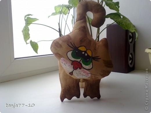 Ароматный котик фото 4
