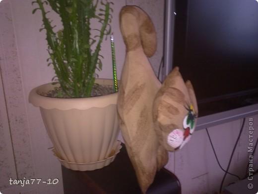 Ароматный котик фото 2